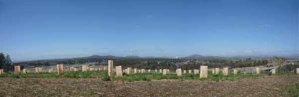 One of the views from the National Arboretum, Canberra