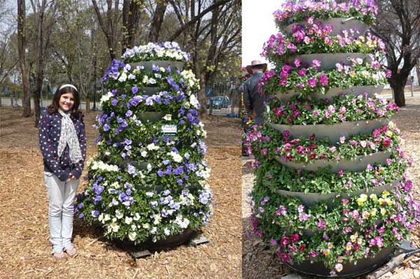 Amy at Floriade, with some flower towers