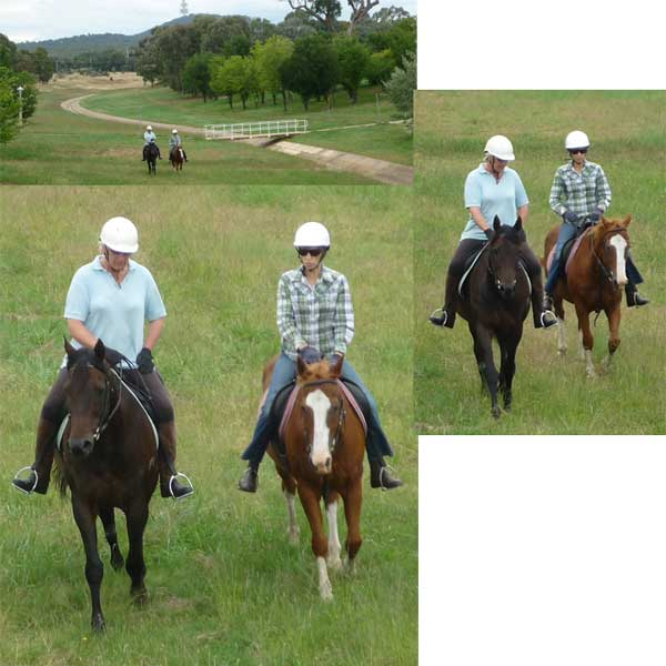 Three shots of a pair of horses being ridden beside the stormwater channel