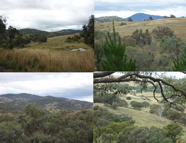 Four different views from the Old Tuggeranong Road