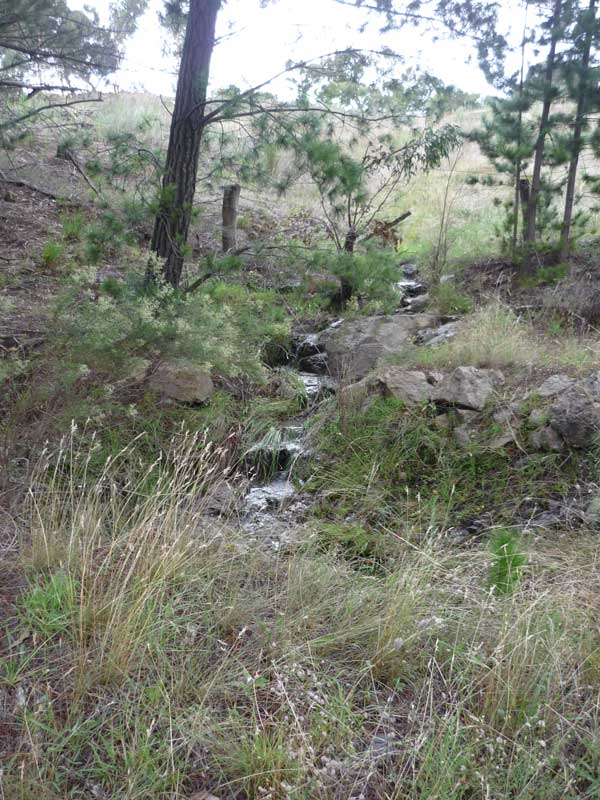 A small waterfall flows down to the road
