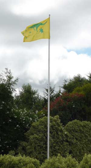 Flagpole flying yellow flag with green kangaroo