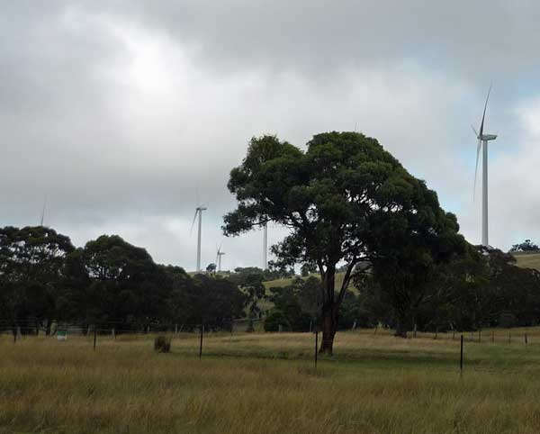 Closer to turbines at Cullerin Range Wind Farm