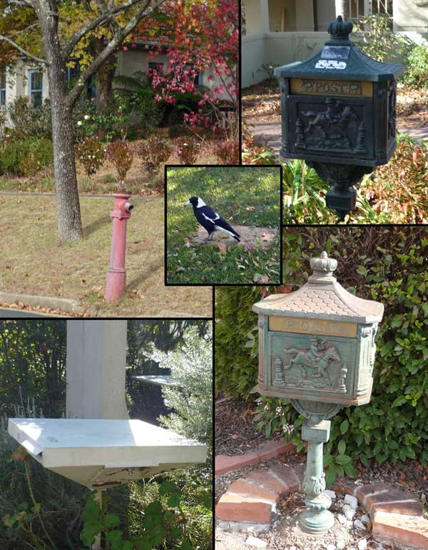 Clockwise: heritage fire hydrant, three letterboxes. Centre: magpie